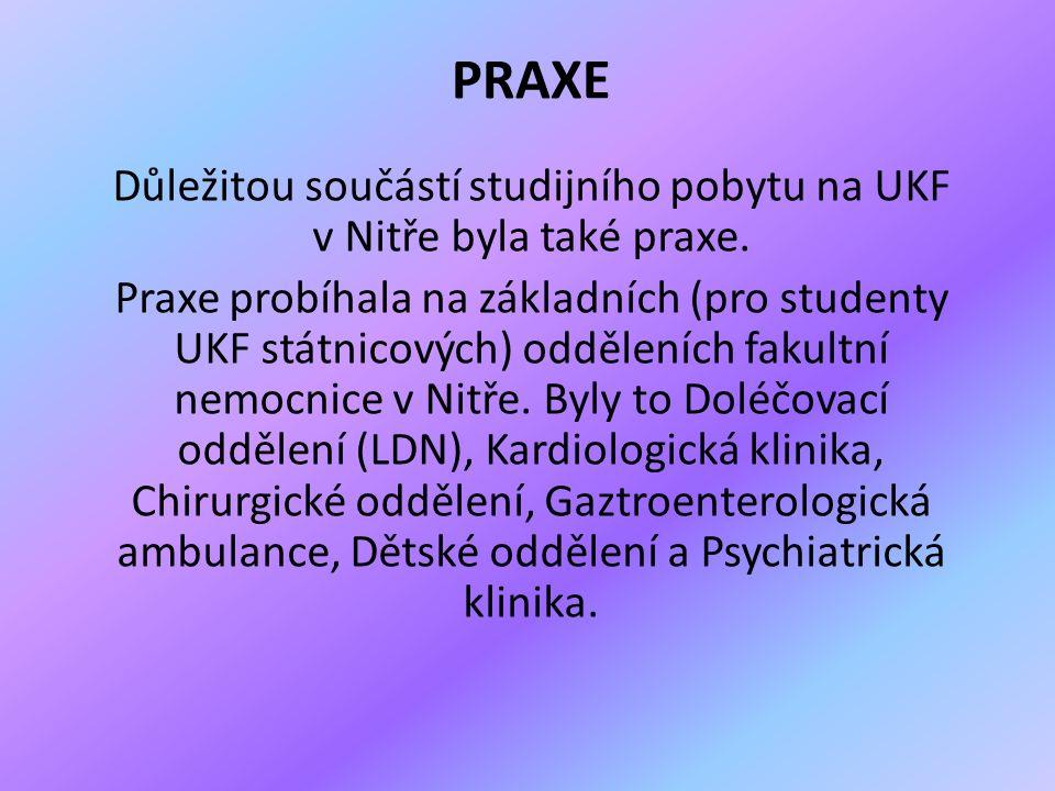 PRAXE Důležitou součástí studijního pobytu na UKF v Nitře byla také praxe.