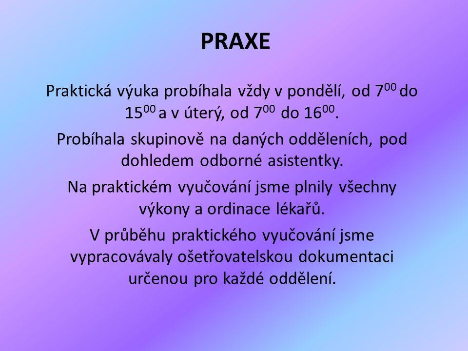 PRAXE Praktická výuka probíhala vždy v pondělí, od 7 00 do 15 00 a v úterý, od 7 00 do 16 00.