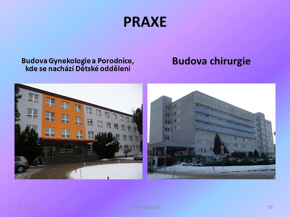 PRAXE Budova Gynekologie a Porodnice, kde se nachází Dětské oddělení Budova chirurgie 24.9.201636Petra Velecká