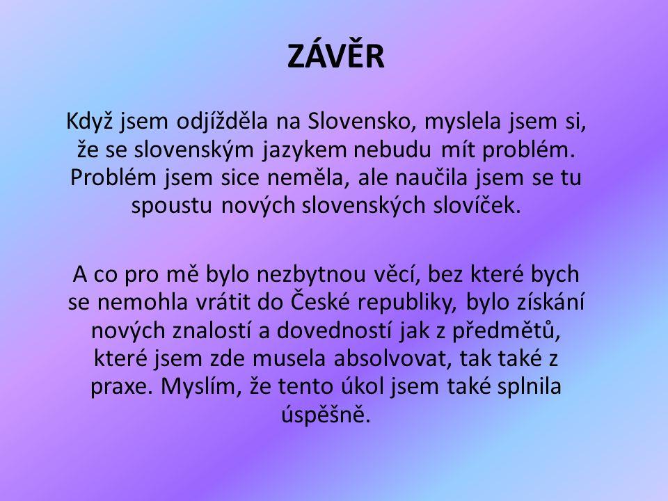 ZÁVĚR Když jsem odjížděla na Slovensko, myslela jsem si, že se slovenským jazykem nebudu mít problém.