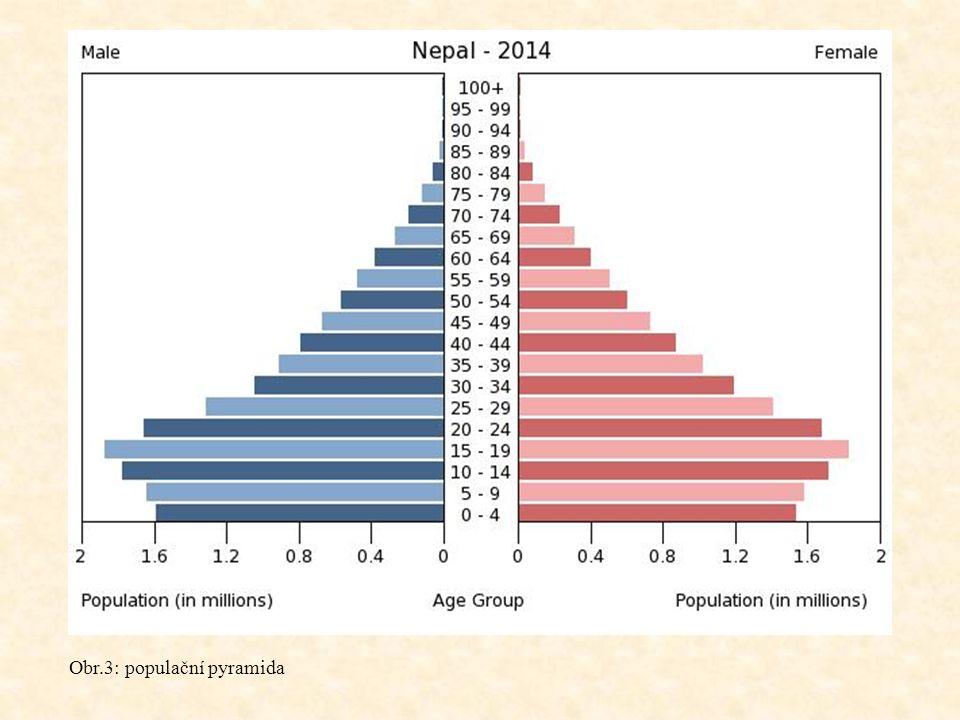 Obr.3: populační pyramida