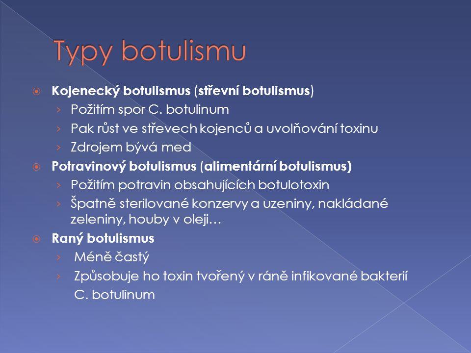  Pro terapii - botulotoxin typu A a B  Zavedení aplikace BTX = výrazný pokrok v léčbě řady neurologických onemocnění  Injekce BTX k terapii chorob s nadměrnou svalovou kontrakcí  Mírní obtíže, ale neléčí příčinu choroby  Účinek dávky přetrvává v průměru 12 týdnů  Léčba: › Idiopatický blefarospasmus, cervikální dystonie, grafospasmus, dětská mozková obrna, těžká spasticita končetin…