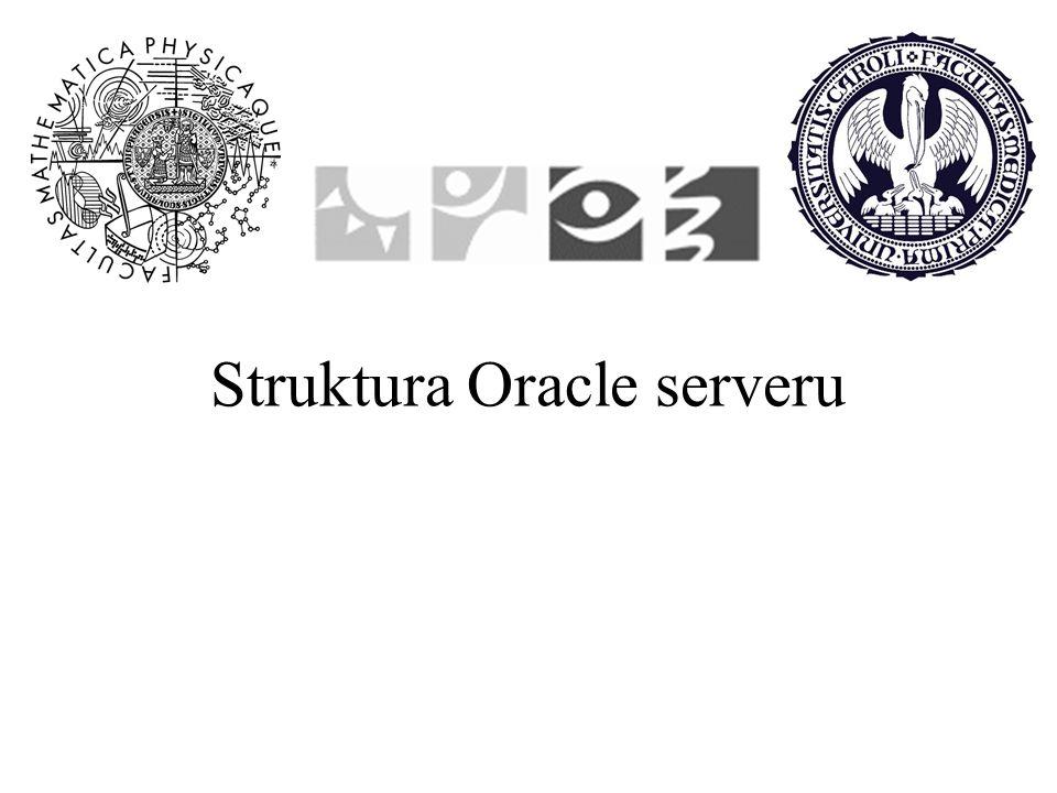 Struktura Oracle serveru