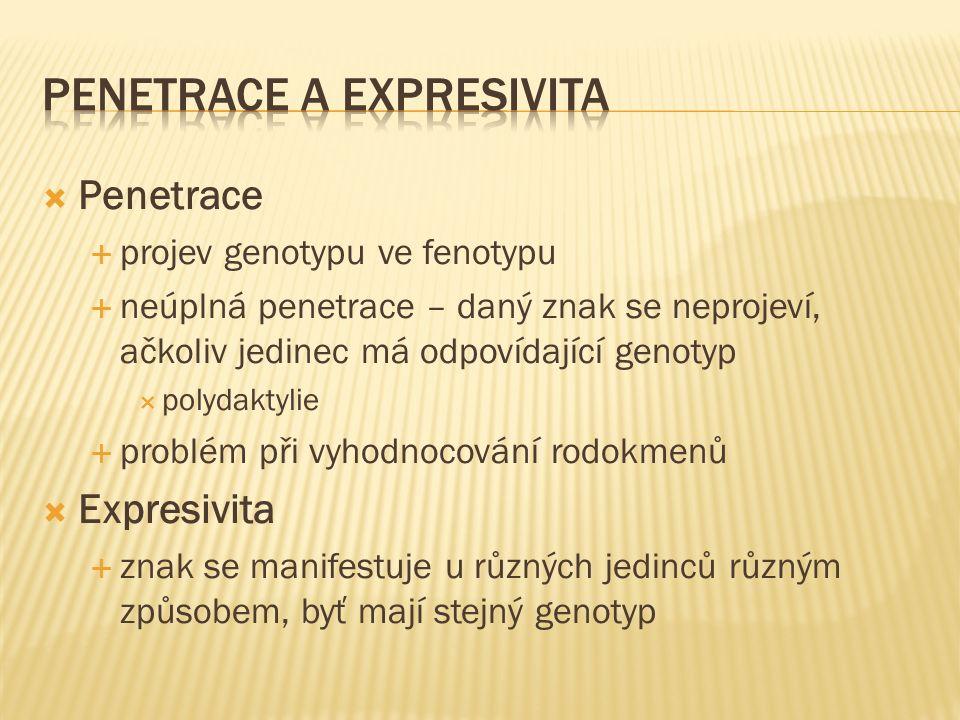  Penetrace  projev genotypu ve fenotypu  neúplná penetrace – daný znak se neprojeví, ačkoliv jedinec má odpovídající genotyp  polydaktylie  problém při vyhodnocování rodokmenů  Expresivita  znak se manifestuje u různých jedinců různým způsobem, byť mají stejný genotyp