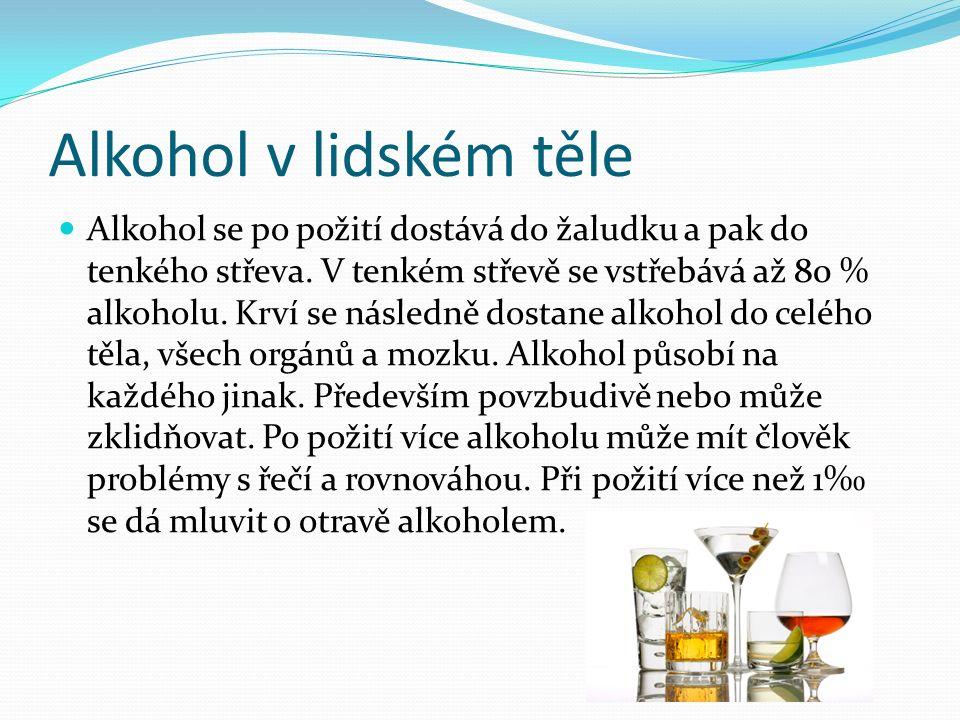 Alkohol v lidském těle Alkohol se po požití dostává do žaludku a pak do tenkého střeva. V tenkém střevě se vstřebává až 80 % alkoholu. Krví se následn