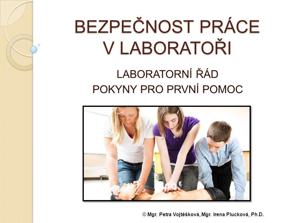 . Používejte ochranné pomůcky. Do laboratoře vstupujete jen v doprovodu vyučujícího!