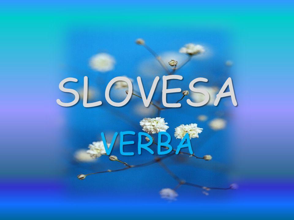 SLOVESA VERBA