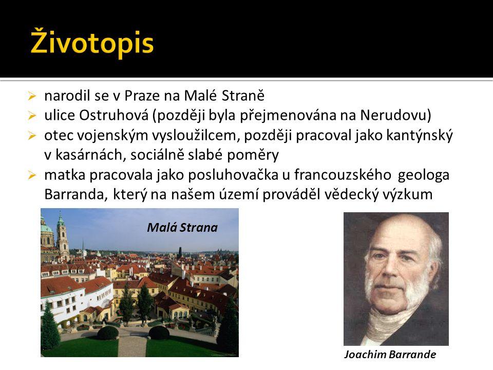  narodil se v Praze na Malé Straně  ulice Ostruhová (později byla přejmenována na Nerudovu)  otec vojenským vysloužilcem, později pracoval jako kantýnský v kasárnách, sociálně slabé poměry  matka pracovala jako posluhovačka u francouzského geologa Barranda, který na našem území prováděl vědecký výzkum Joachim Barrande Malá Strana