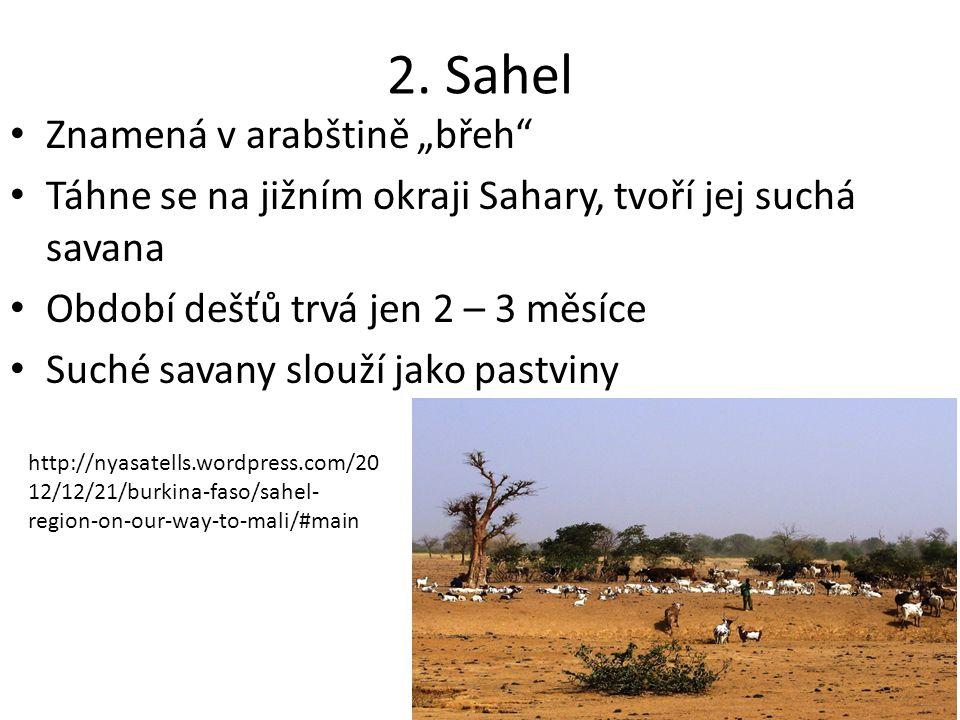 """2. Sahel Znamená v arabštině """"břeh"""" Táhne se na jižním okraji Sahary, tvoří jej suchá savana Období dešťů trvá jen 2 – 3 měsíce Suché savany slouží ja"""