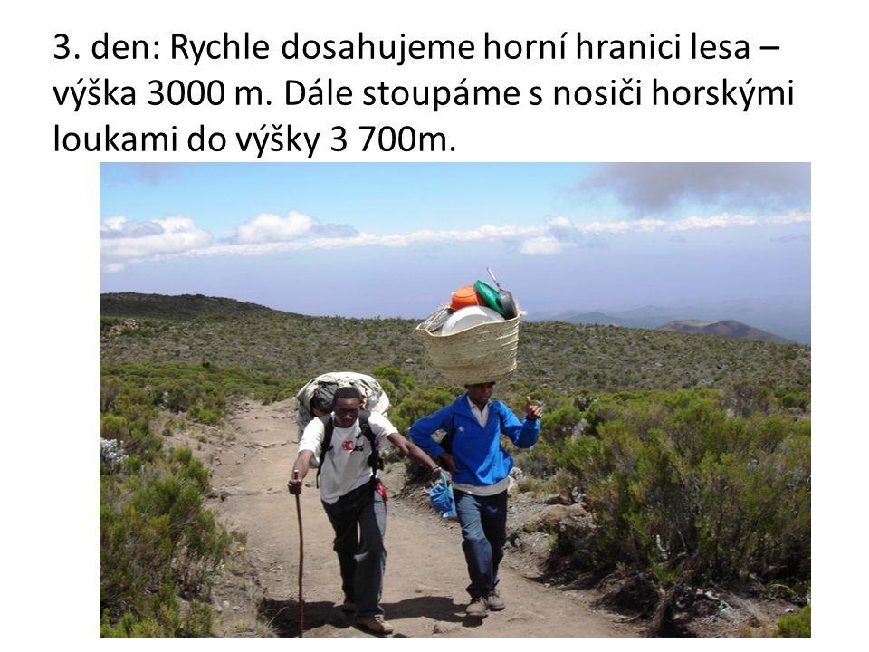 3. den: Rychle dosahujeme horní hranici lesa – výška 3000 m.