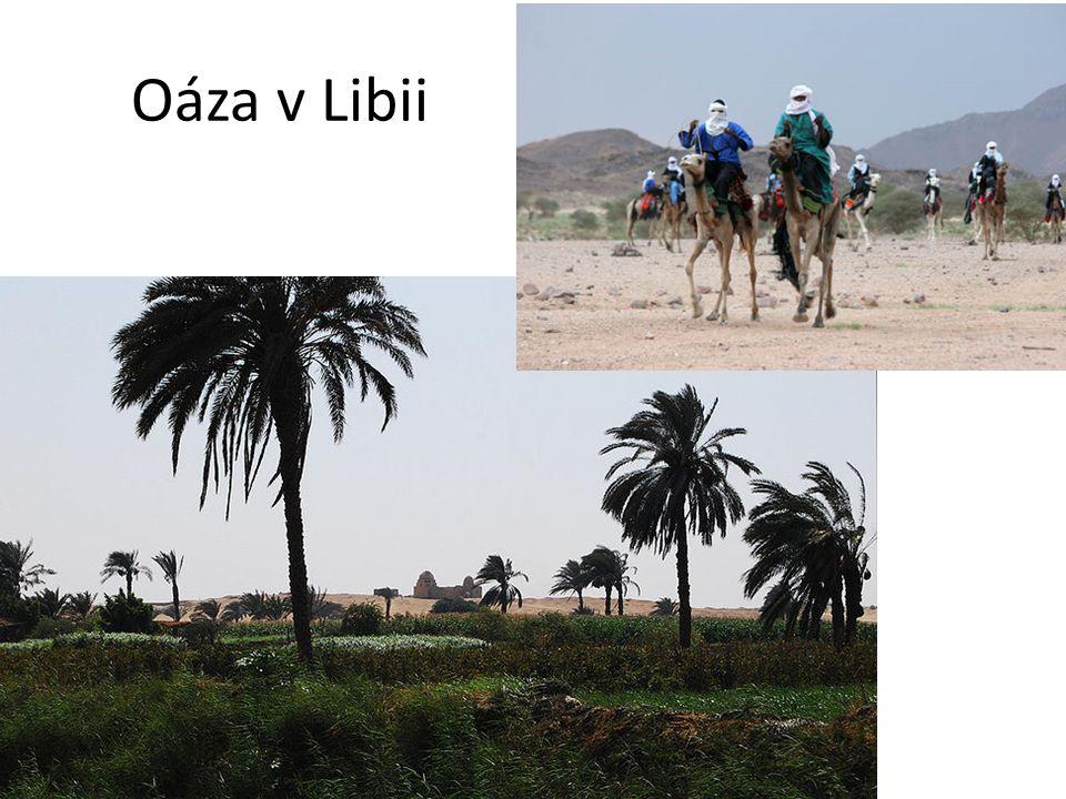 Oáza v Libii