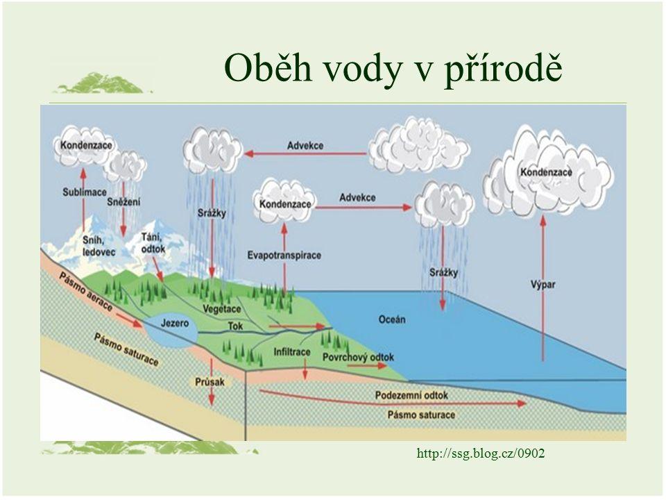 Oběh vody v přírodě Mezi pevninou a mořem Jen v rámci pevniny