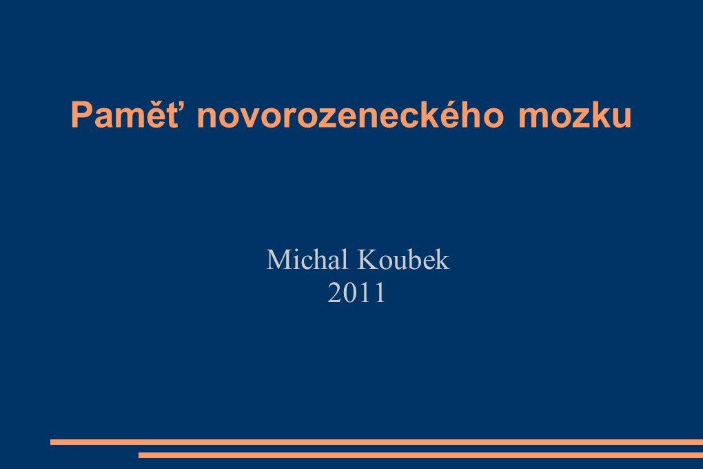 Paměť novorozeneckého mozku Michal Koubek 2011