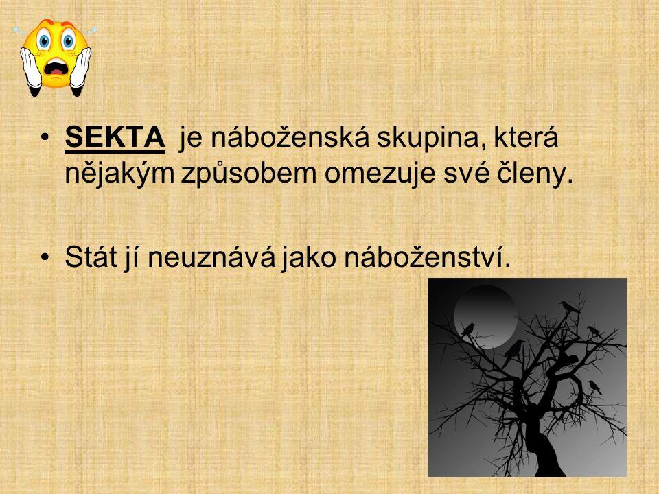 SEKTA je náboženská skupina, která nějakým způsobem omezuje své členy.