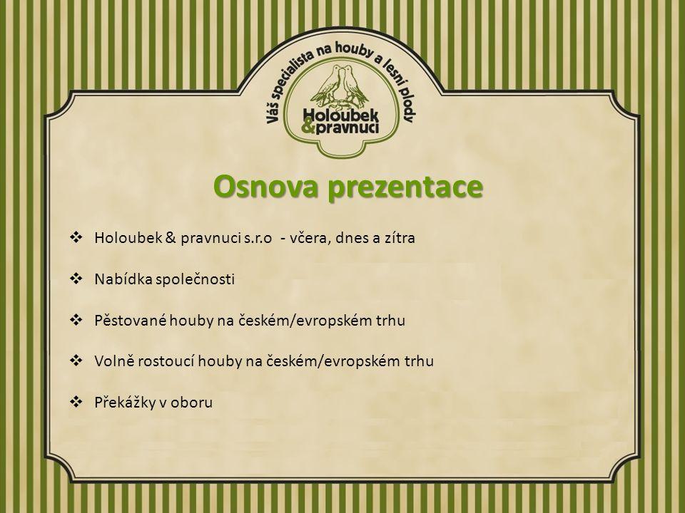 Osnova prezentace  Holoubek & pravnuci s.r.o - včera, dnes a zítra  Nabídka společnosti  Pěstované houby na českém/evropském trhu  Volně rostoucí houby na českém/evropském trhu  Překážky v oboru