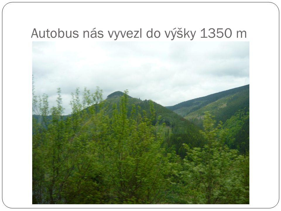 Autobus nás vyvezl do výšky 1350 m