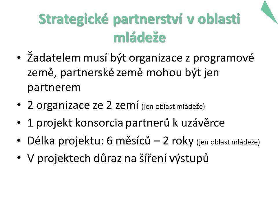 Strategické partnerství v oblasti mládeže Žadatelem musí být organizace z programové země, partnerské země mohou být jen partnerem 2 organizace ze 2 zemí (jen oblast mládeže) 1 projekt konsorcia partnerů k uzávěrce Délka projektu: 6 měsíců – 2 roky (jen oblast mládeže) V projektech důraz na šíření výstupů 18