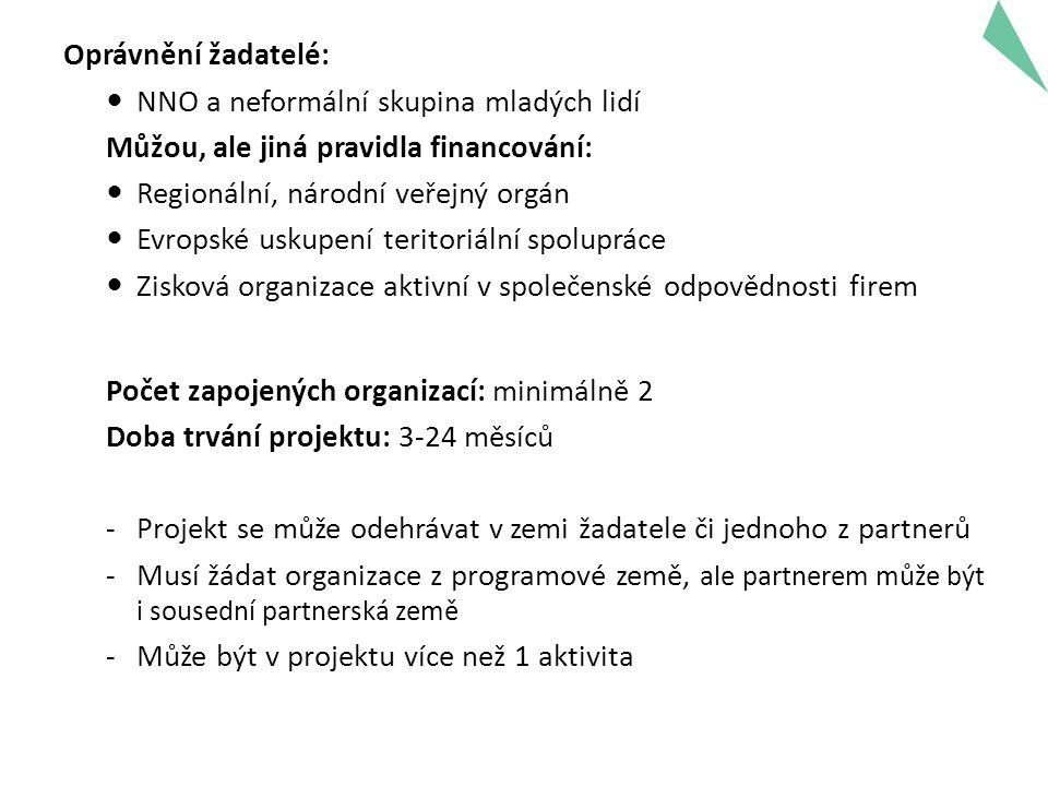 Oprávnění žadatelé: NNO a neformální skupina mladých lidí Můžou, ale jiná pravidla financování: Regionální, národní veřejný orgán Evropské uskupení teritoriální spolupráce Zisková organizace aktivní v společenské odpovědnosti firem Počet zapojených organizací: minimálně 2 Doba trvání projektu: 3-24 měsíců -Projekt se může odehrávat v zemi žadatele či jednoho z partnerů -Musí žádat organizace z programové země, ale partnerem může být i sousední partnerská země -Může být v projektu více než 1 aktivita 8