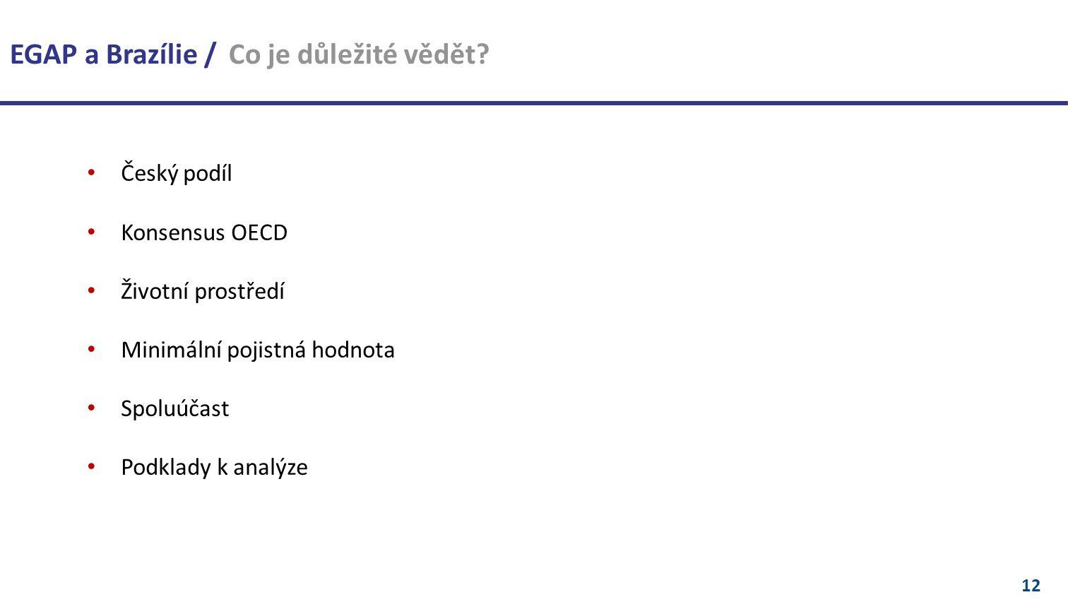 12 Český podíl Konsensus OECD Životní prostředí Minimální pojistná hodnota Spoluúčast Podklady k analýze EGAP a Brazílie / Co je důležité vědět
