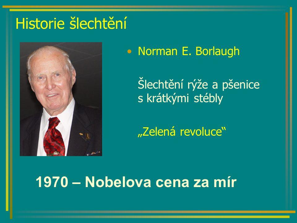 Historie šlechtění Norman E.