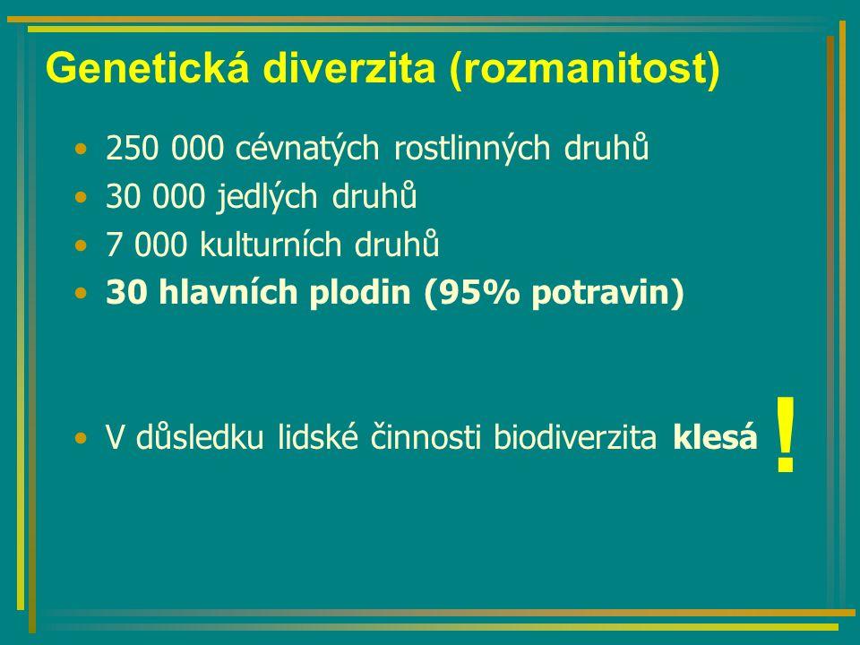 Genetická diverzita (rozmanitost) 250 000 cévnatých rostlinných druhů 30 000 jedlých druhů 7 000 kulturních druhů 30 hlavních plodin (95% potravin) V důsledku lidské činnosti biodiverzita klesá !