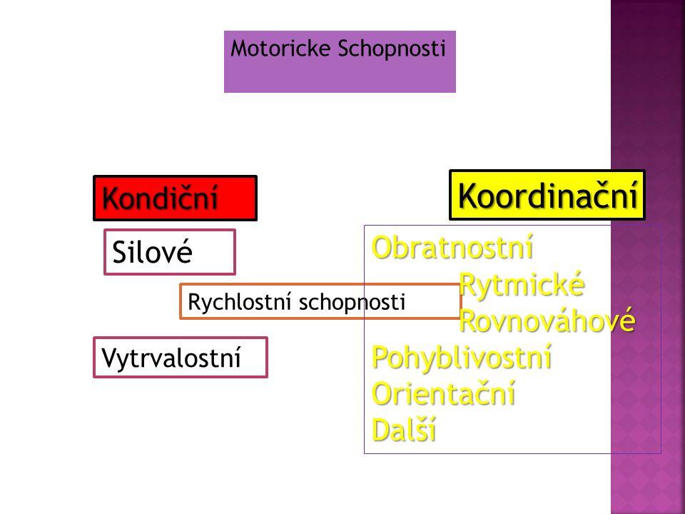Systematicky využívat modifikovaných (zjednodušených) aktivit a pomůcek.