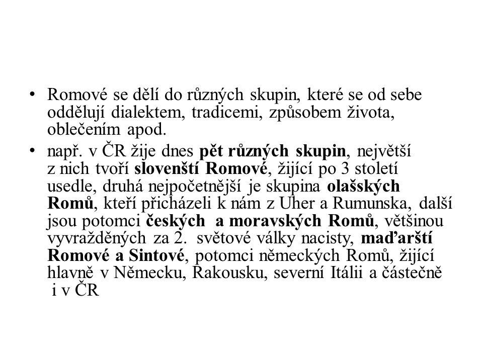 Romové se dělí do různých skupin, které se od sebe oddělují dialektem, tradicemi, způsobem života, oblečením apod.