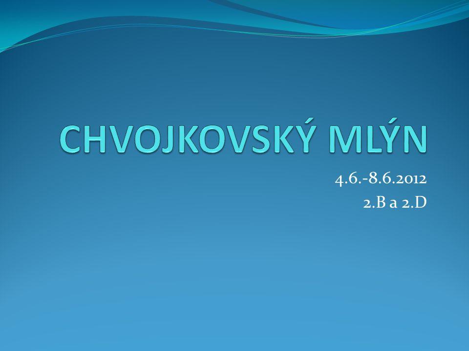 4.6.-8.6.2012 2.B a 2.D