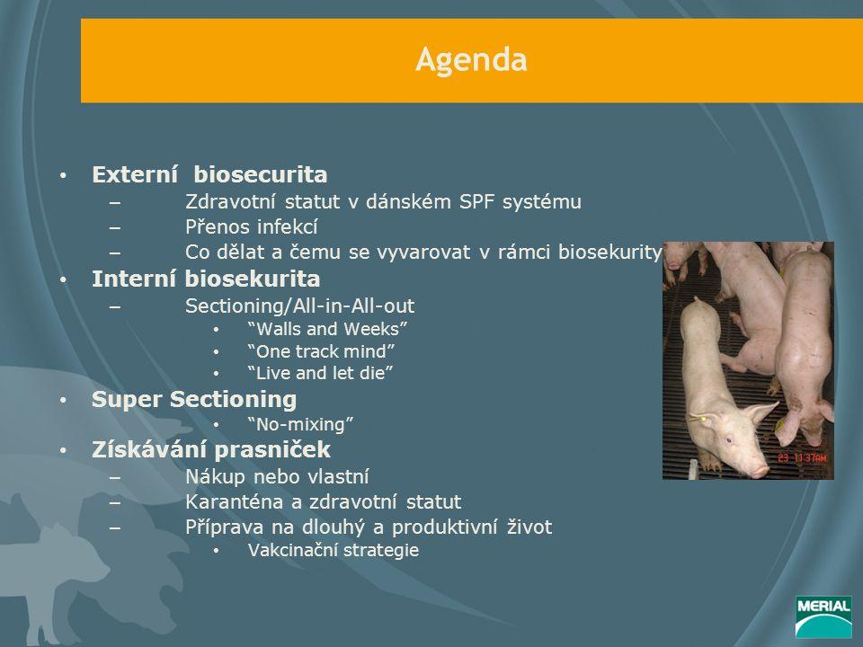 Agenda Externí biosecurita – Zdravotní statut v dánském SPF systému – Přenos infekcí – Co dělat a čemu se vyvarovat v rámci biosekurity Interní biosekurita – Sectioning/All-in-All-out Walls and Weeks One track mind Live and let die Super Sectioning No-mixing Získávání prasniček – Nákup nebo vlastní – Karanténa a zdravotní statut – Příprava na dlouhý a produktivní život Vakcinační strategie