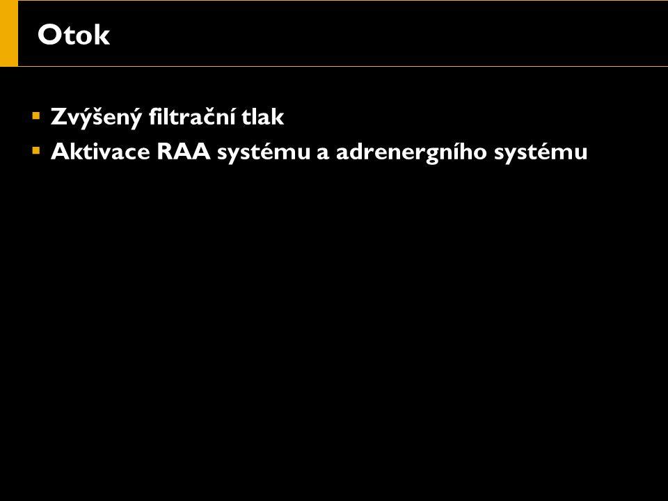 Otok  Zvýšený filtrační tlak  Aktivace RAA systému a adrenergního systému