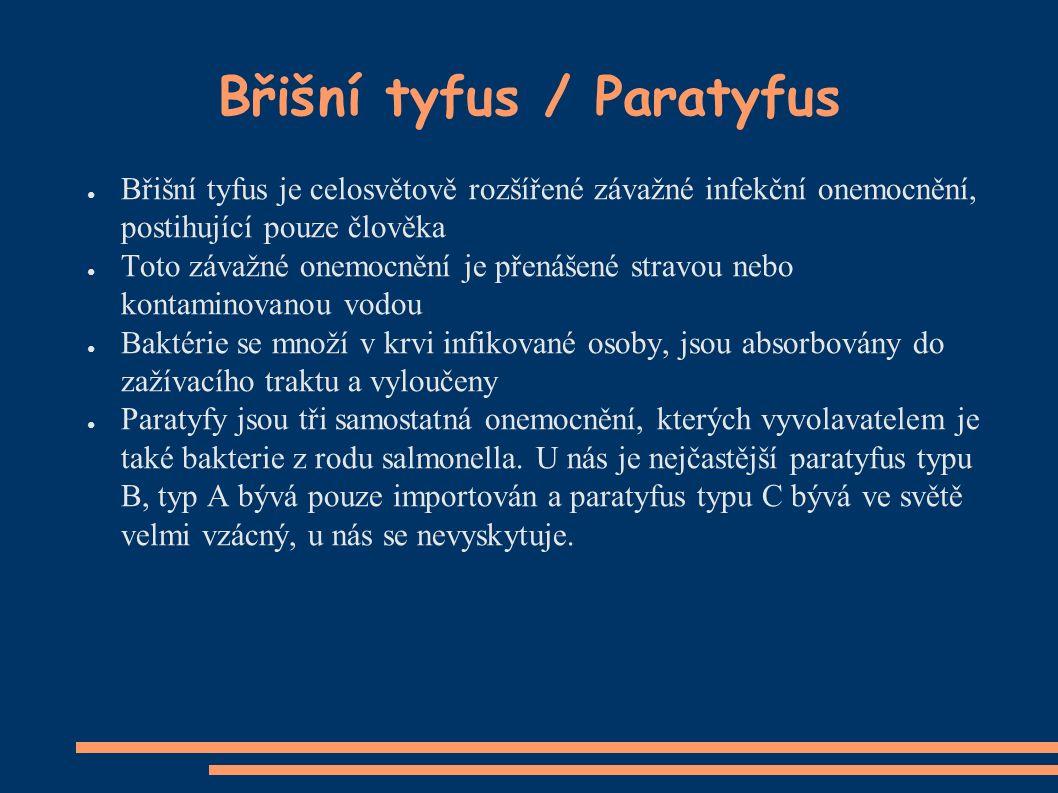 Břišní tyfus / Paratyfus ● Břišní tyfus je celosvětově rozšířené závažné infekční onemocnění, postihující pouze člověka ● Toto závažné onemocnění je přenášené stravou nebo kontaminovanou vodou ● Baktérie se množí v krvi infikované osoby, jsou absorbovány do zažívacího traktu a vyloučeny ● Paratyfy jsou tři samostatná onemocnění, kterých vyvolavatelem je také bakterie z rodu salmonella.