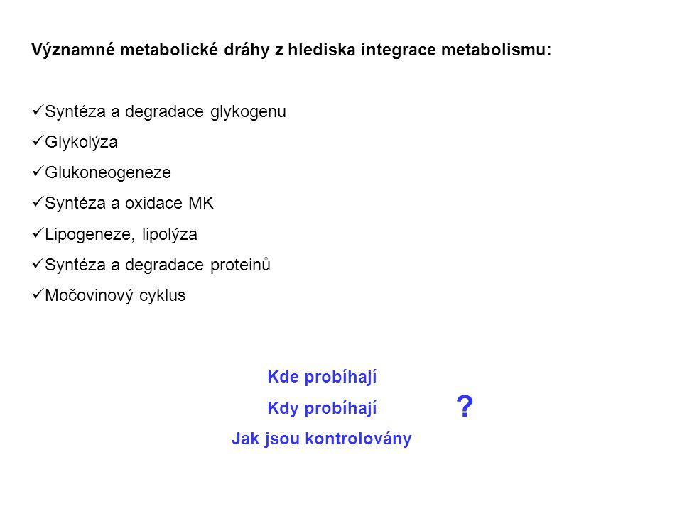 Významné metabolické dráhy z hlediska integrace metabolismu: Syntéza a degradace glykogenu Glykolýza Glukoneogeneze Syntéza a oxidace MK Lipogeneze, lipolýza Syntéza a degradace proteinů Močovinový cyklus Kde probíhají Kdy probíhají Jak jsou kontrolovány