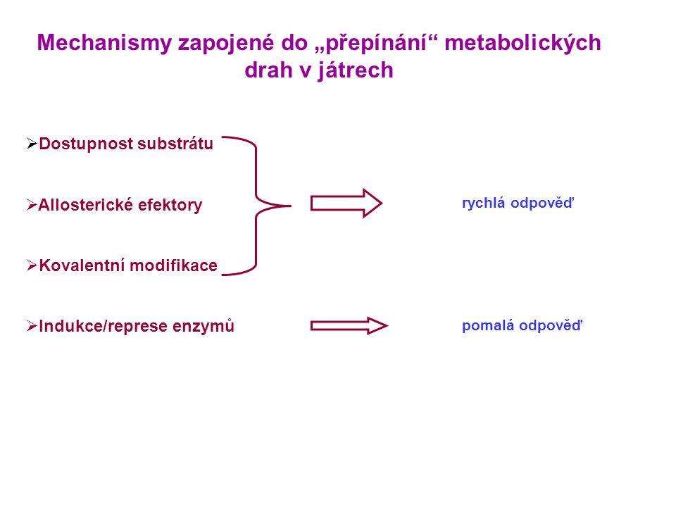 """Mechanismy zapojené do """"přepínání"""" metabolických drah v játrech  Dostupnost substrátu  Allosterické efektory  Kovalentní modifikace  Indukce/repre"""