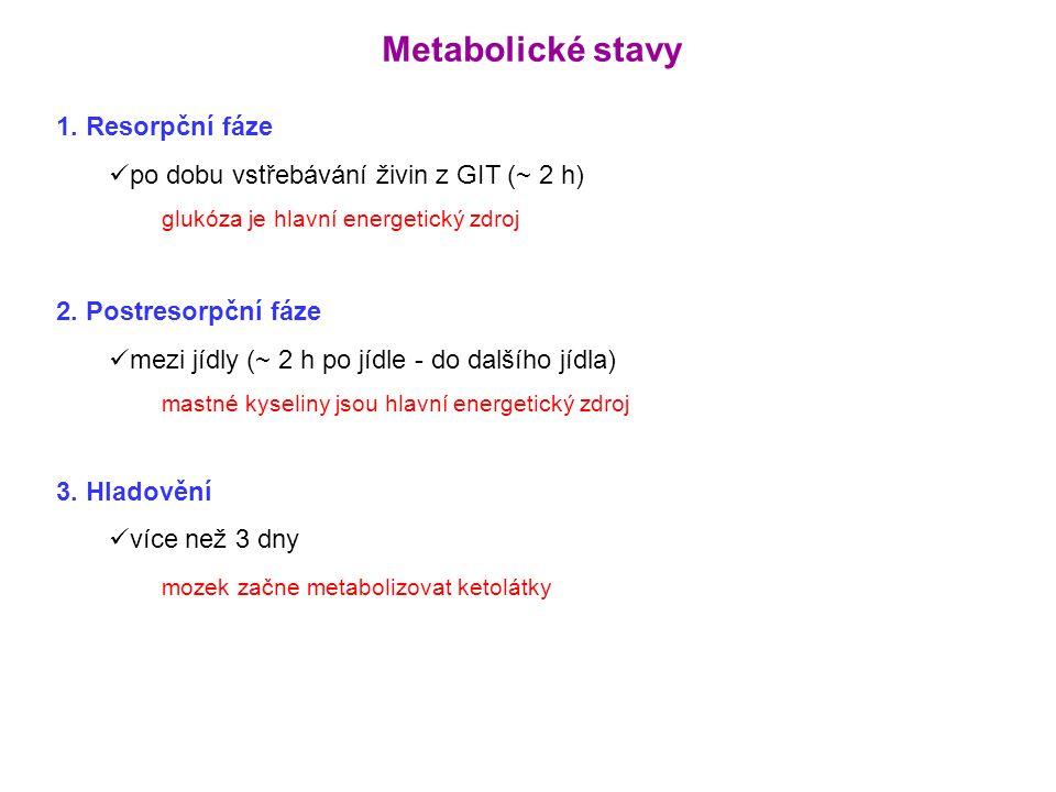 Metabolické změny v těhotenství: Inzulinová rezistence (placentární steroidy) → po jídle ↑ Glu a inzulin Rychlejší přechod do postresorpční fáze (rychlejší pokles Glu, inzulinu, AK) → rozvoj hypoglykémie Stimulace lipolýzy (placentární laktogen) Glukagon → ketogeneze
