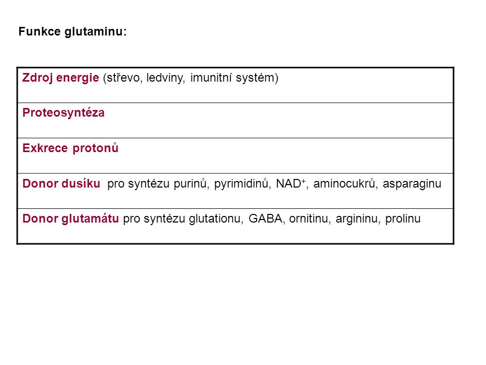 Zdroj energie (střevo, ledviny, imunitní systém) Proteosyntéza Exkrece protonů Donor dusíku pro syntézu purinů, pyrimidinů, NAD +, aminocukrů, asparag