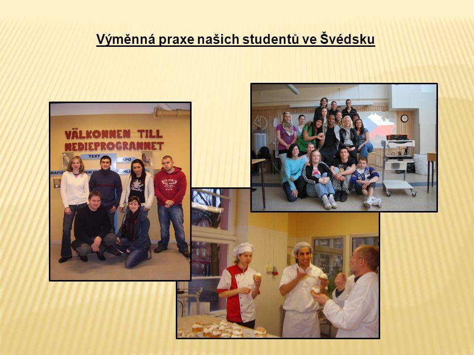 Výměnná praxe našich studentů ve Švédsku