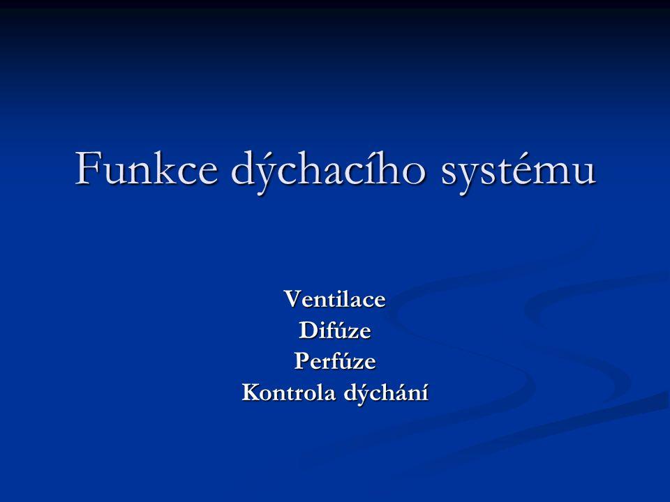 Funkce dýchacího systému VentilaceDifúzePerfúze Kontrola dýchání