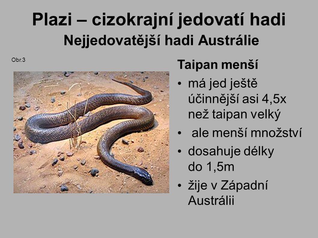 Plazi – cizokrajní jedovatí hadi Nejjedovatější hadi Austrálie Taipan menší má jed ještě účinnější asi 4,5x než taipan velký ale menší množství dosahuje délky do 1,5m žije v Západní Austrálii Obr.3