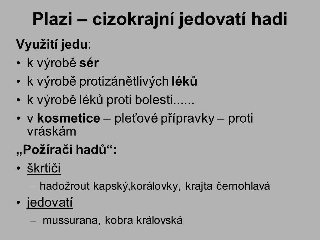 Plazi – cizokrajní jedovatí hadi Využití jedu: k výrobě sér k výrobě protizánětlivých léků k výrobě léků proti bolesti......