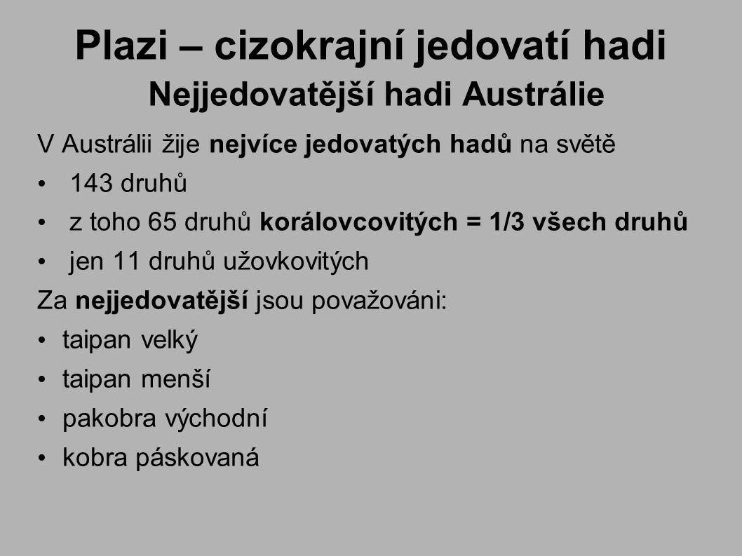 Plazi – cizokrajní jedovatí hadi Nejjedovatější hadi Austrálie V Austrálii žije nejvíce jedovatých hadů na světě 143 druhů z toho 65 druhů korálovcovitých = 1/3 všech druhů jen 11 druhů užovkovitých Za nejjedovatější jsou považováni: taipan velký taipan menší pakobra východní kobra páskovaná
