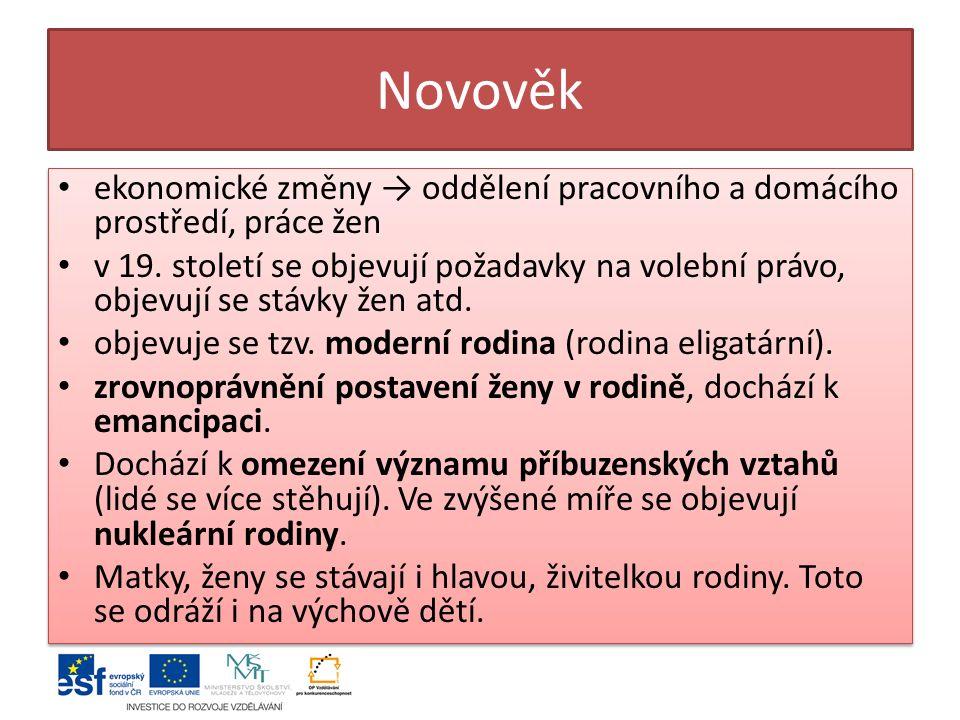 Novověk ekonomické změny → oddělení pracovního a domácího prostředí, práce žen v 19.