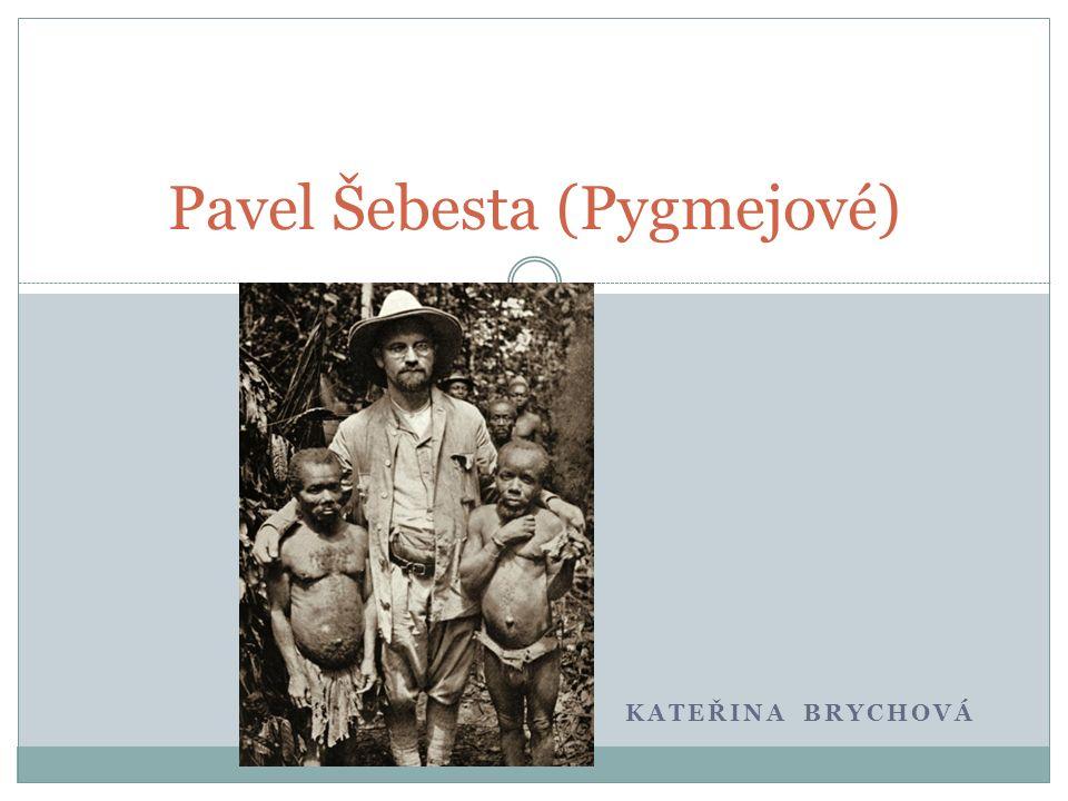 KATEŘINA BRYCHOVÁ Pavel Šebesta (Pygmejové)