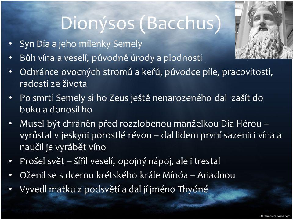 Dionýsos (Bacchus) Syn Dia a jeho milenky Semely Bůh vína a veselí, původně úrody a plodnosti Ochránce ovocných stromů a keřů, původce píle, pracovito