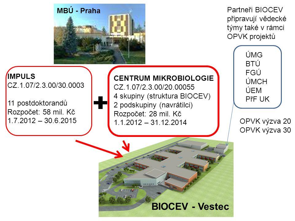 BIOCEV - Vestec ÚMG BTÚ FGÚ ÚMCH ÚEM PřF UK OPVK výzva 20 OPVK výzva 30 MBÚ - Praha IMPULS CZ.1.07/2.3.00/30.0003 11 postdoktorandů Rozpočet: 58 mil.