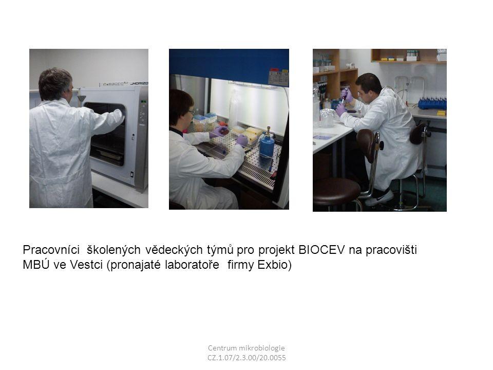 Centrum mikrobiologie CZ.1.07/2.3.00/20.0055 Pracovníci školených vědeckých týmů pro projekt BIOCEV na pracovišti MBÚ ve Vestci (pronajaté laboratoře firmy Exbio)