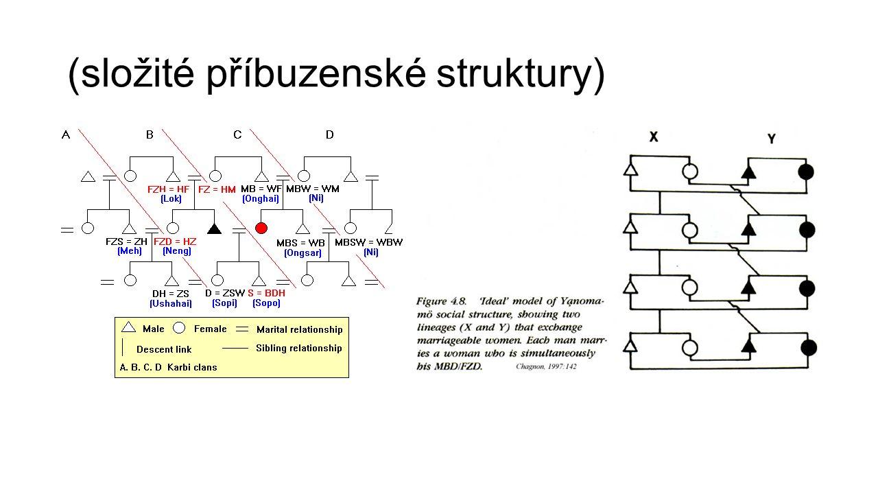 (složité příbuzenské struktury)