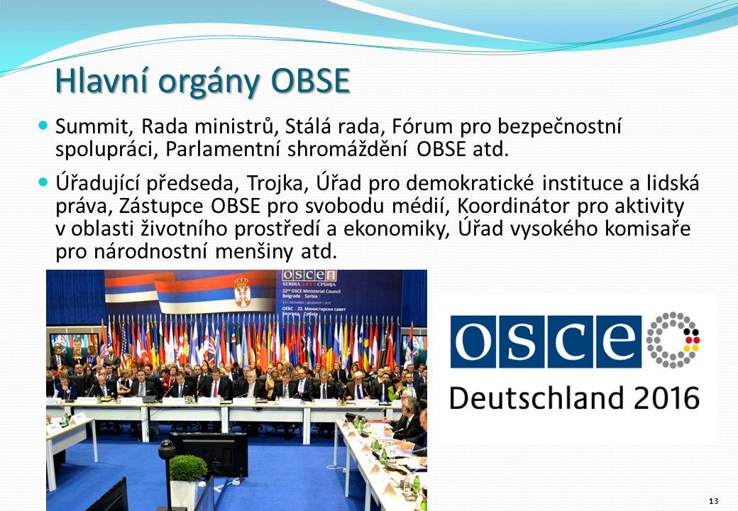 Hlavní orgány OBSE Summit, Rada ministrů, Stálá rada, Fórum pro bezpečnostní spolupráci, Parlamentní shromáždění OBSE atd.