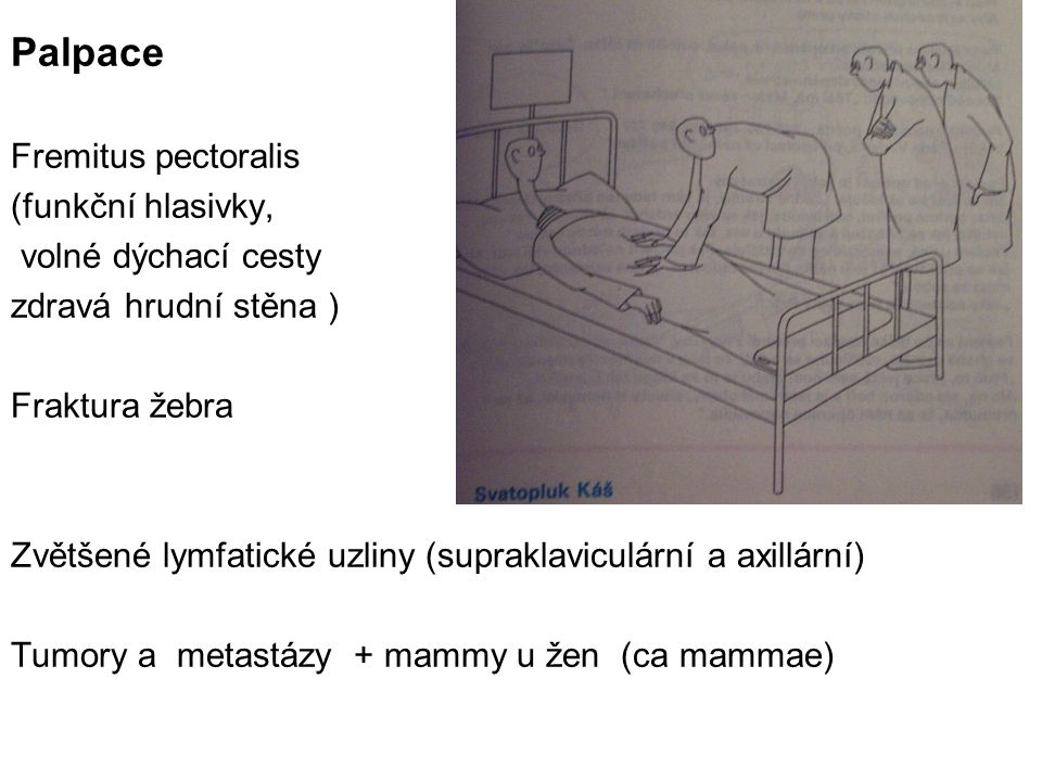 Palpace Fremitus pectoralis (funkční hlasivky, volné dýchací cesty zdravá hrudní stěna ) Fraktura žebra Zvětšené lymfatické uzliny (supraklaviculární