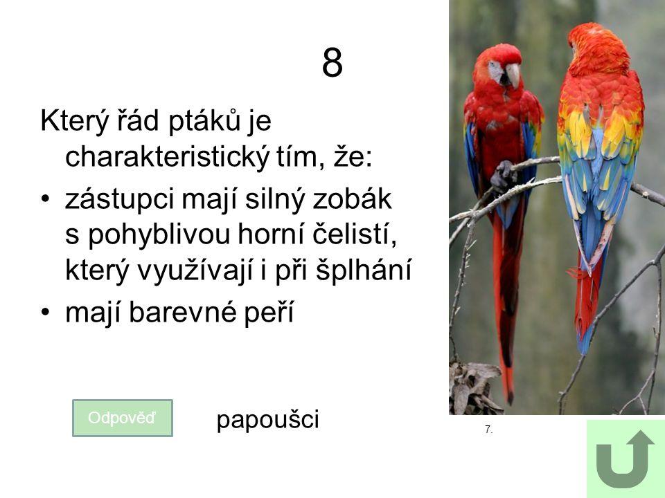 8 Který řád ptáků je charakteristický tím, že: zástupci mají silný zobák s pohyblivou horní čelistí, který využívají i při šplhání mají barevné peří 7