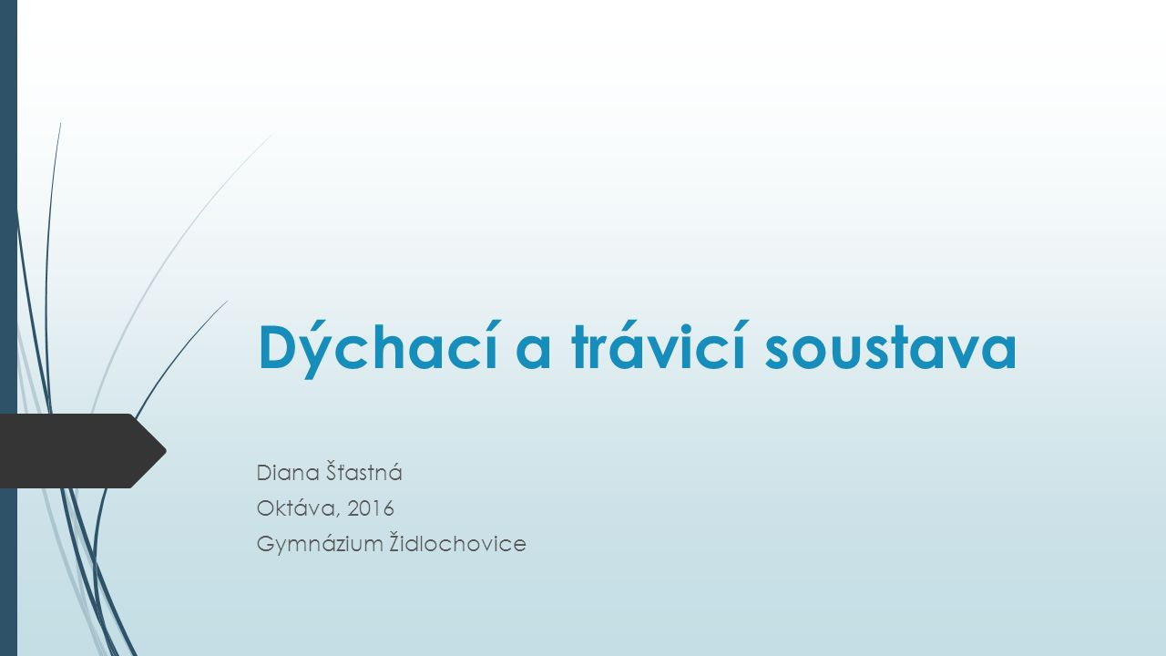 Dýchací a trávicí soustava Diana Šťastná Oktáva, 2016 Gymnázium Židlochovice